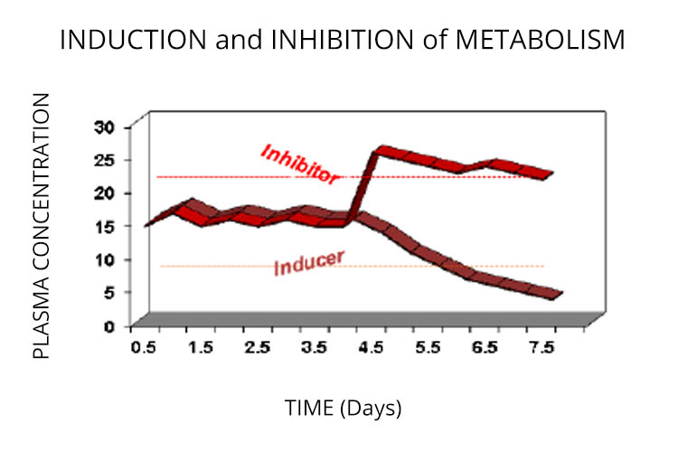 induction and inhibition of metabolism