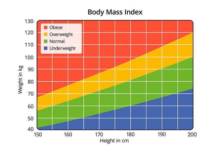 Body mass index chart | Image