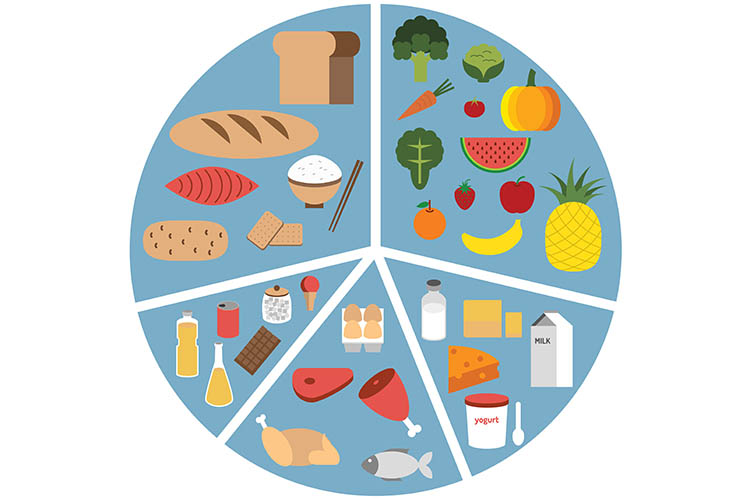 Ausmed's Wound Care and Wound Healing Guide for Nurses The five food groups for a balanced diet.