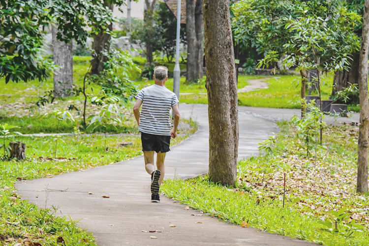 physical activity to reduce dementia risk