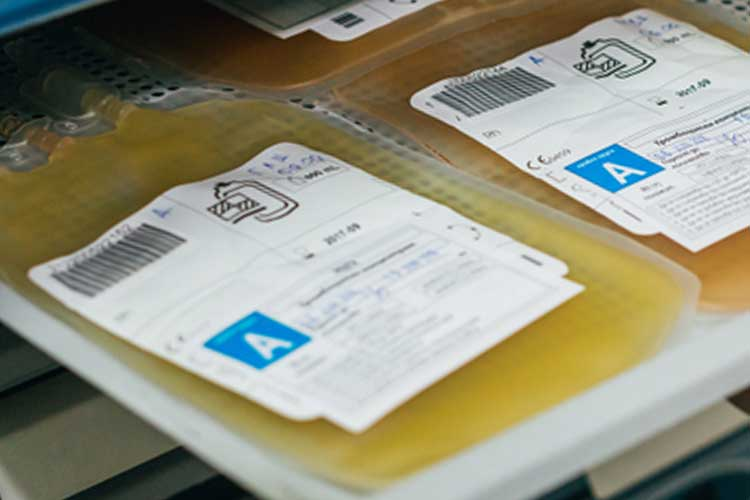 Plasma bags for A blood type on a shelf | Image