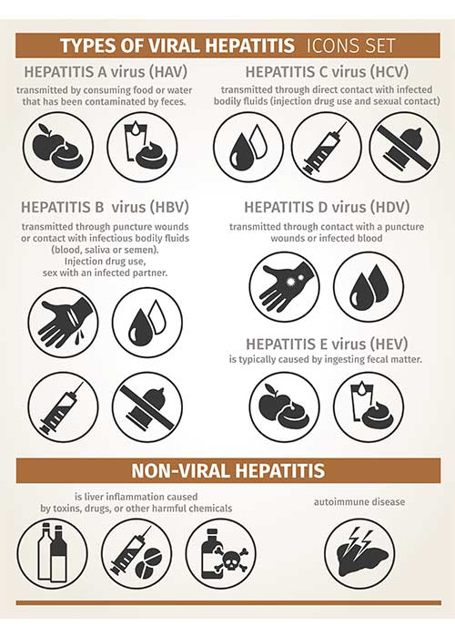 Types of viral hepatitis | Image